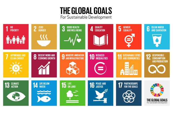 Achieving the Global Goals: the role of sport in ending poverty