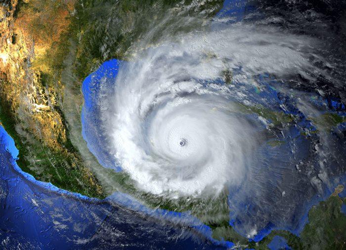 Typhoon Hagibis Recovery: Looking Back